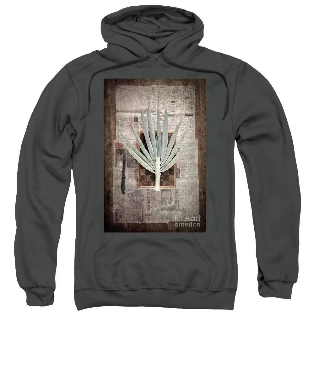 Onion Photographs Hooded Sweatshirts T-Shirts