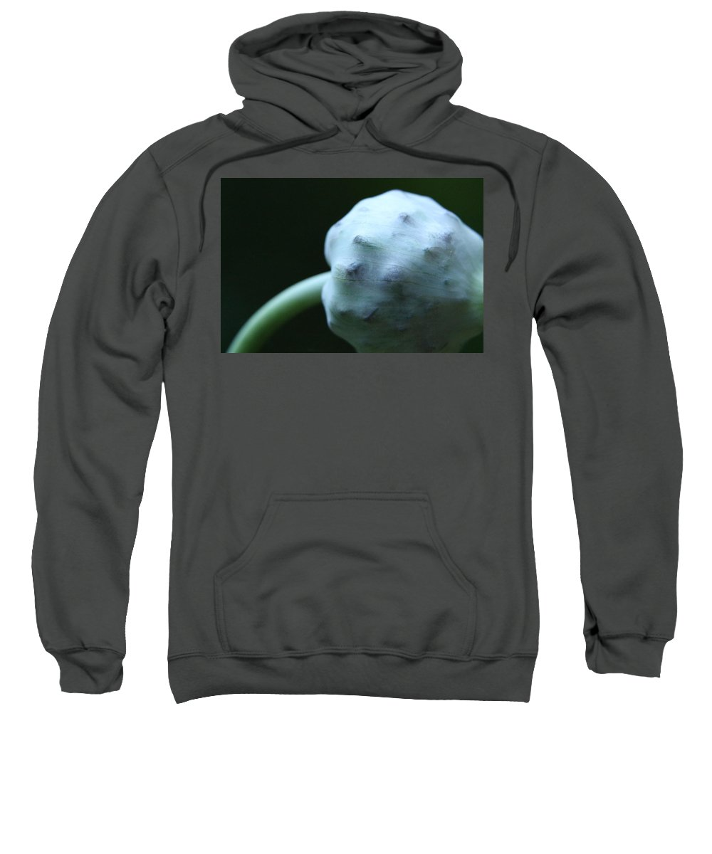 Sweatshirt featuring the photograph Onion Skin by Kevin Cote