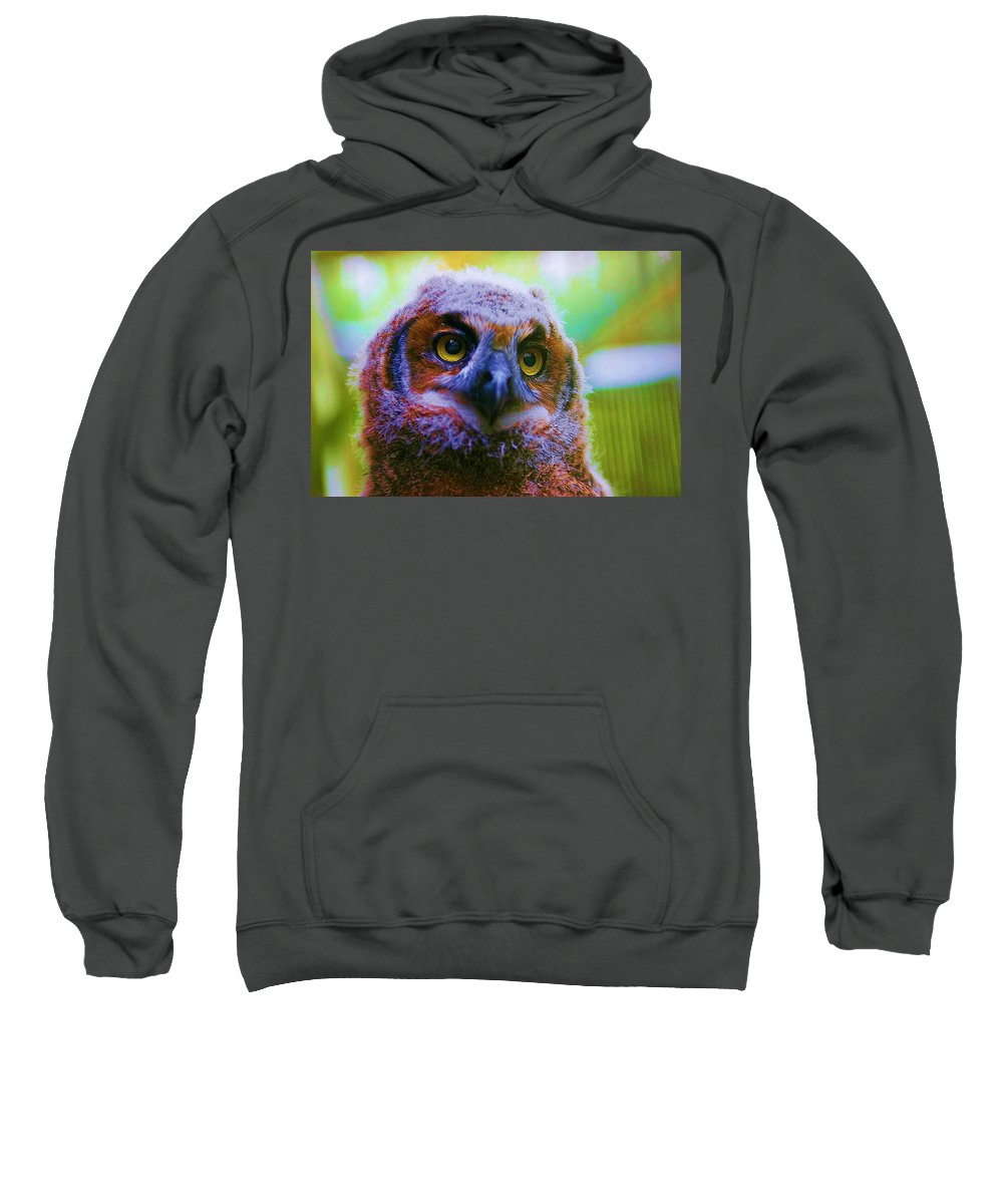 Owl Sweatshirt featuring the photograph Opalescent Owl by Nelson Strong