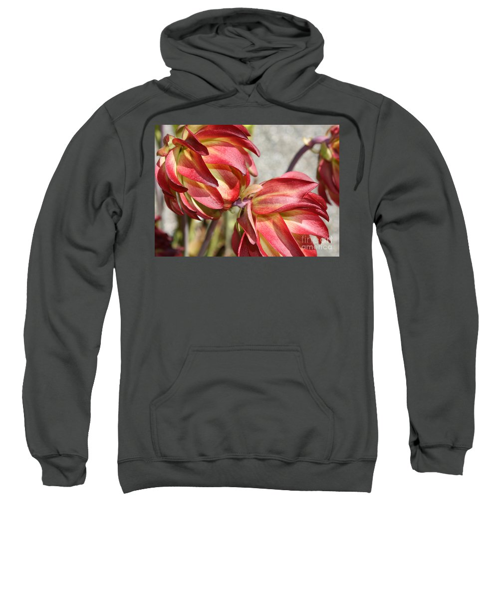 Flower Card Sweatshirt featuring the photograph Orange And Light Green Flowers by Carol Groenen