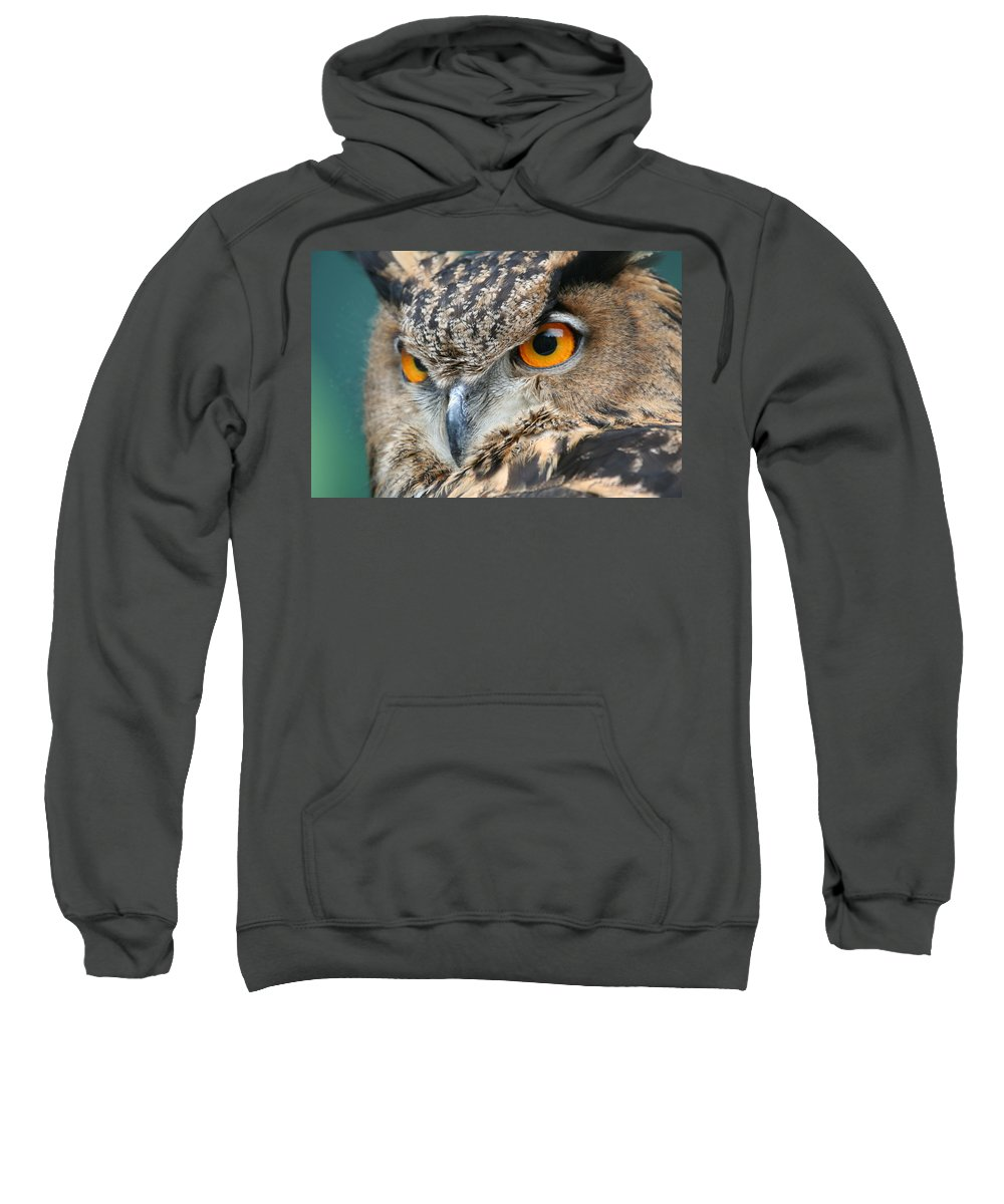 Owl Sweatshirt featuring the photograph Orange Crush by Laddie Halupa