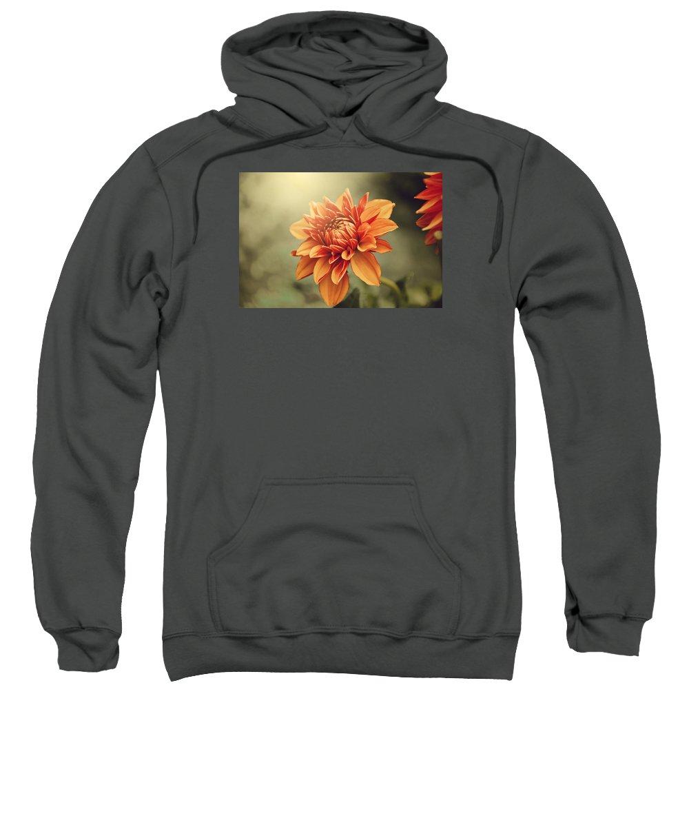 Dahlia Sweatshirt featuring the photograph Orange Dahlia by Juliana RW