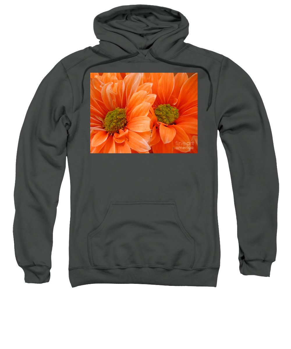 Nature Sweatshirt featuring the photograph Orange Daisies Paired by Lucyna A M Green