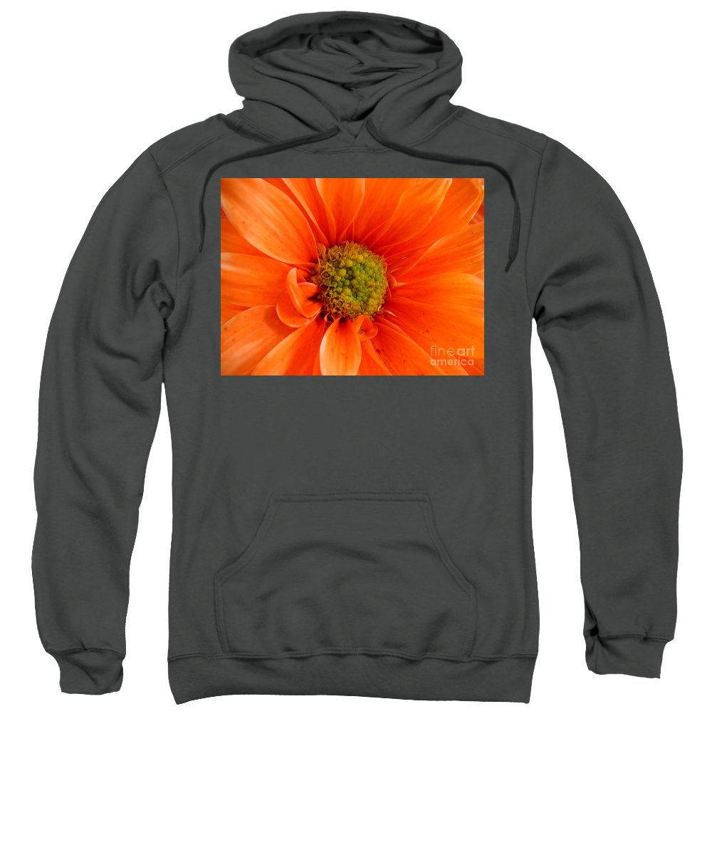 Nature Sweatshirt featuring the photograph Orange Daisy - A Center View by Lucyna A M Green