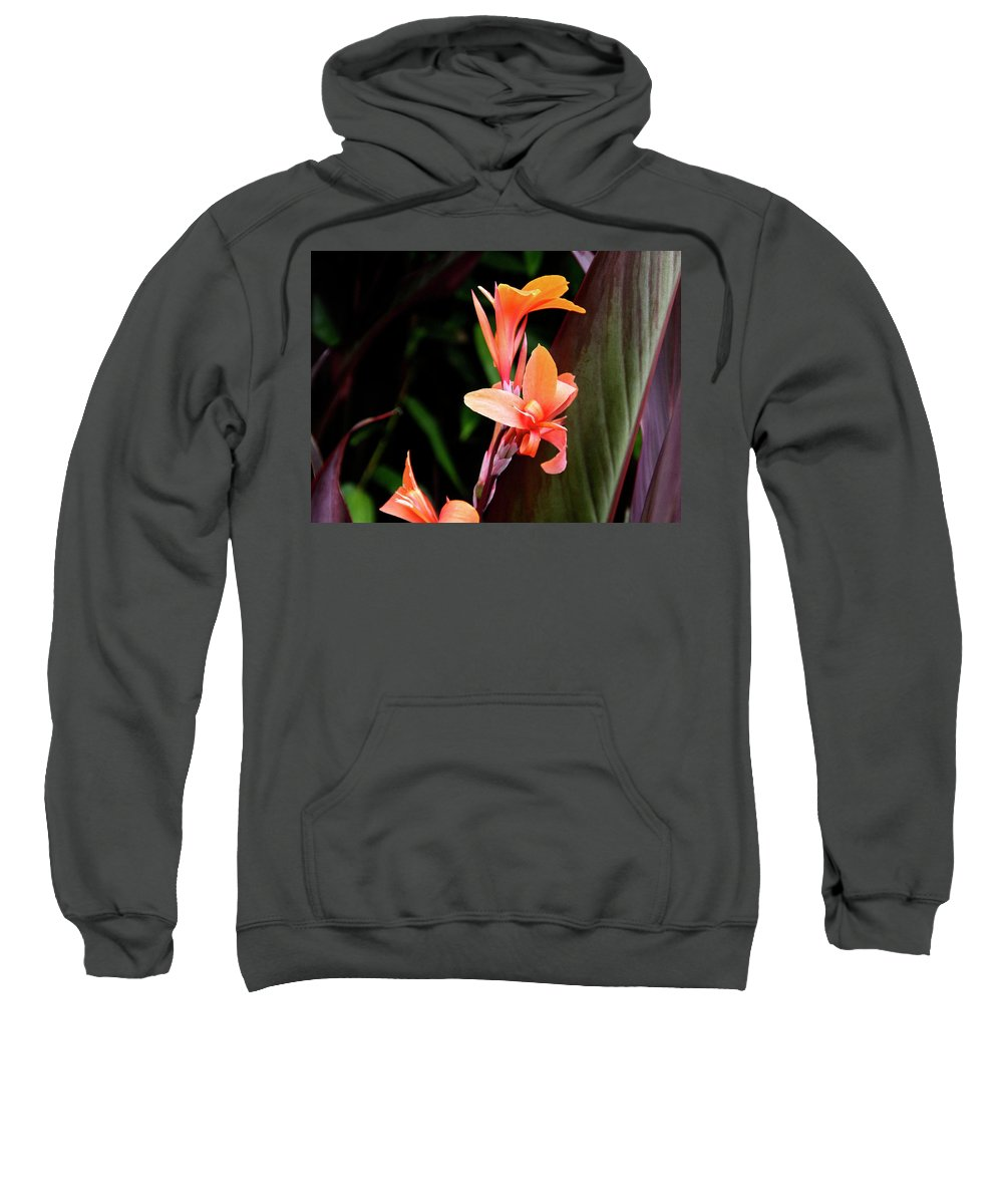 Floral Sweatshirt featuring the photograph Orange Gladiolus by Gene Parks