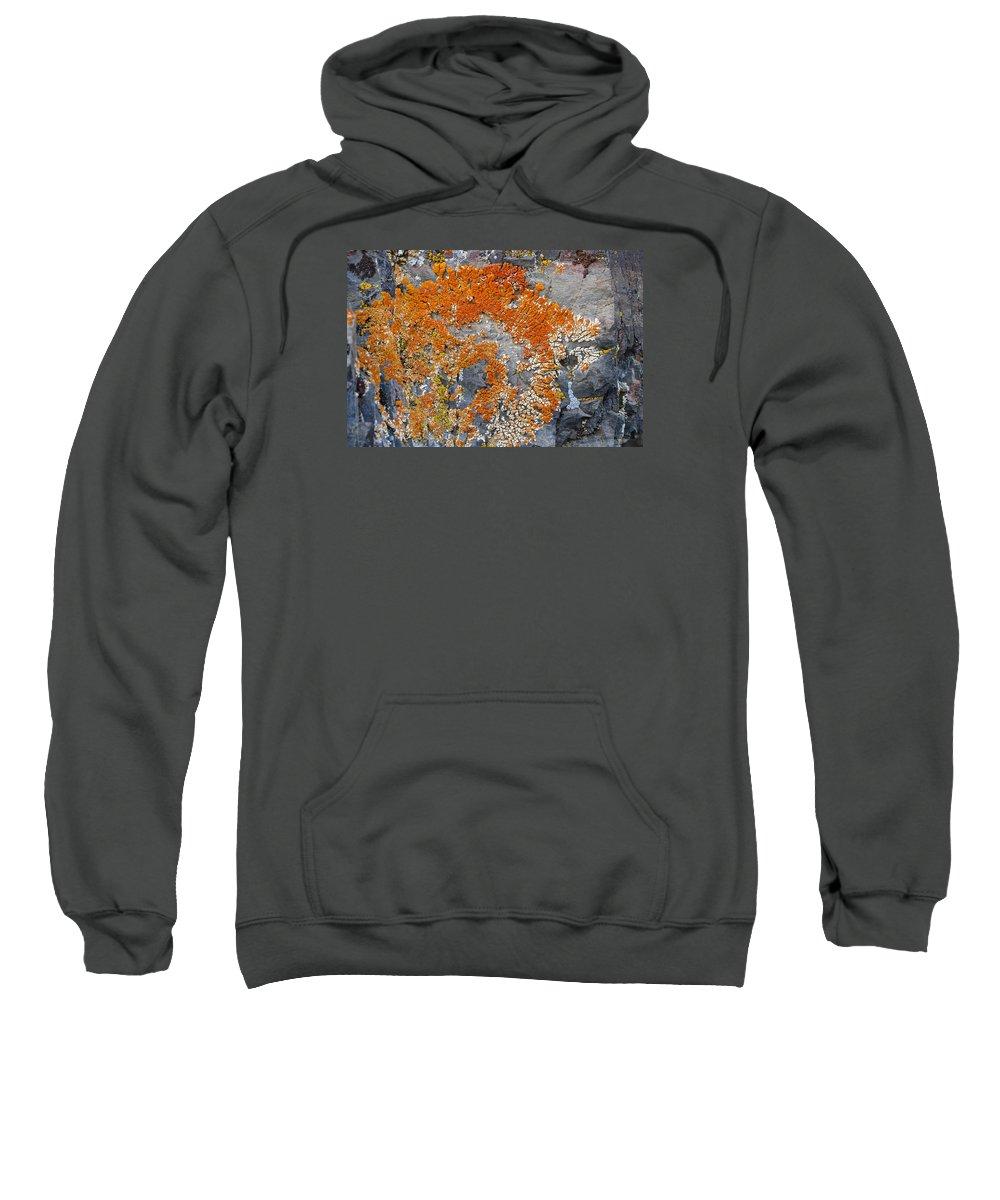 Sweatshirt featuring the photograph Orange Lichen by Eric Rosenwald