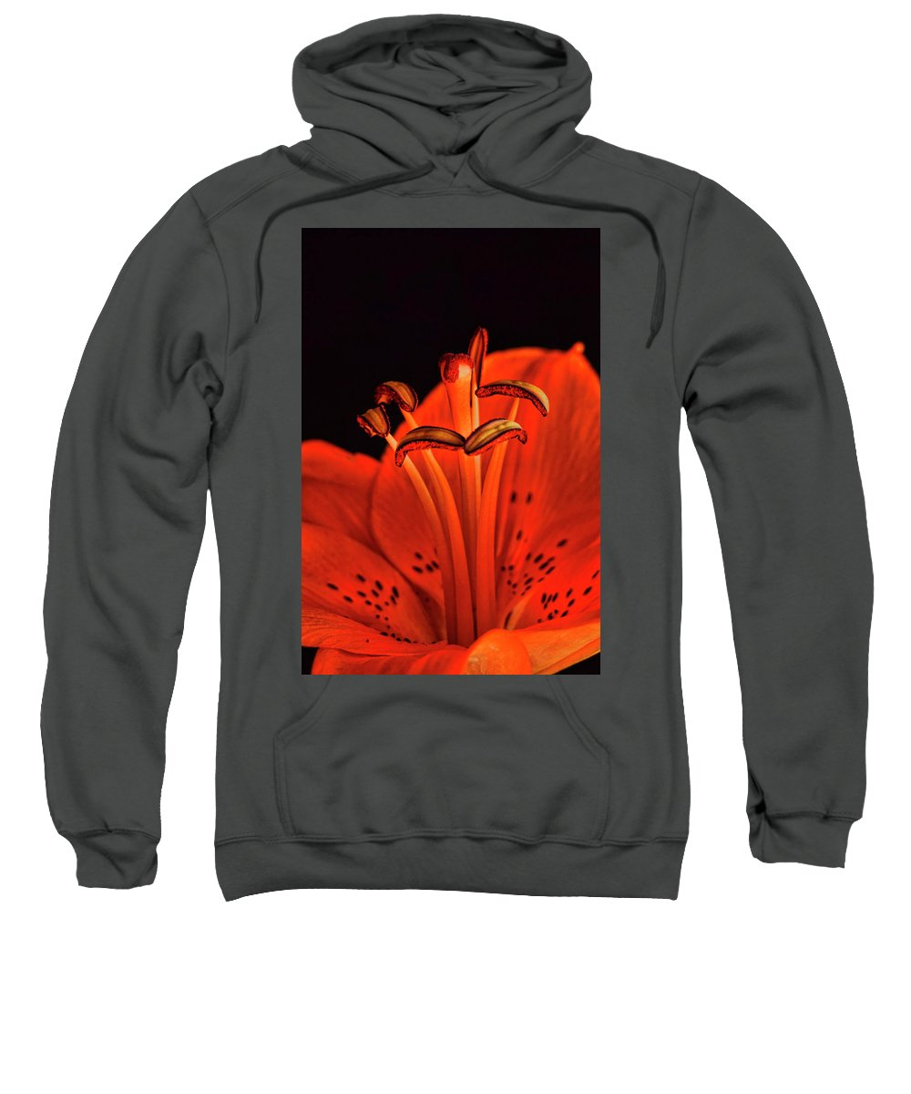 Lilly Sweatshirt featuring the photograph Orange Lilly by Saija Lehtonen