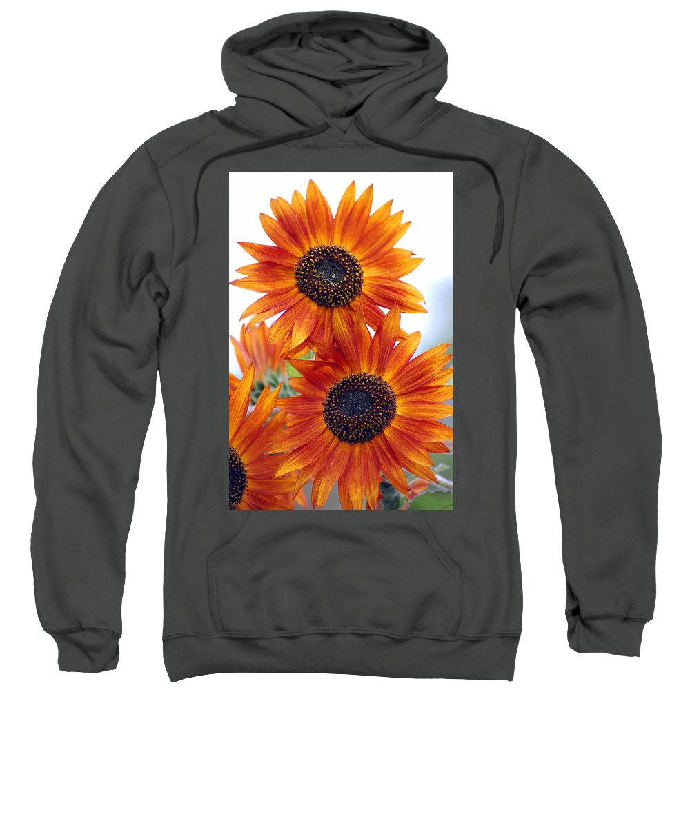 Sunflower Sweatshirt featuring the photograph Orange Sunflower 2 by Amy Fose