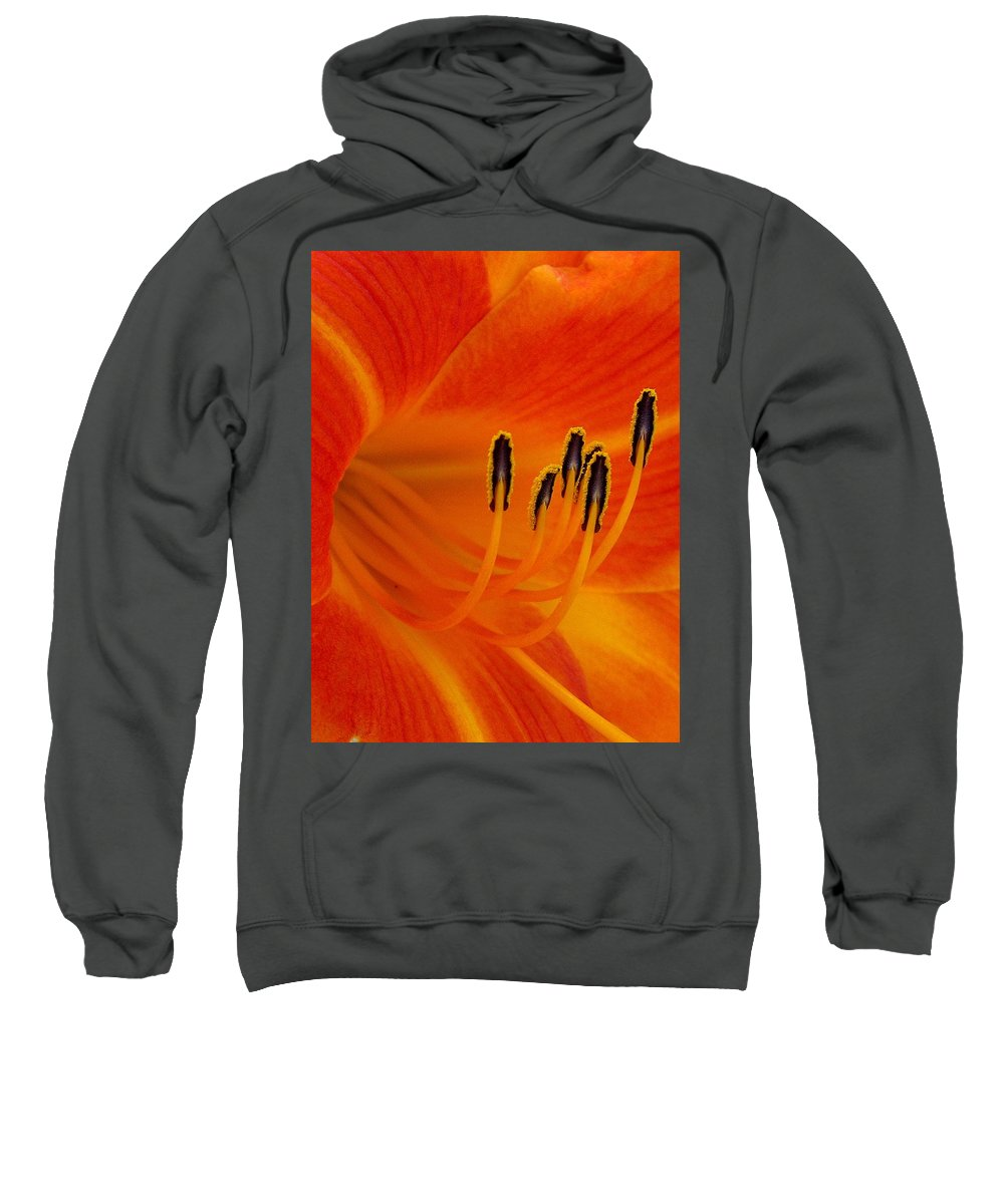 Floral Sweatshirt featuring the photograph Orange You Glad by Marla McFall