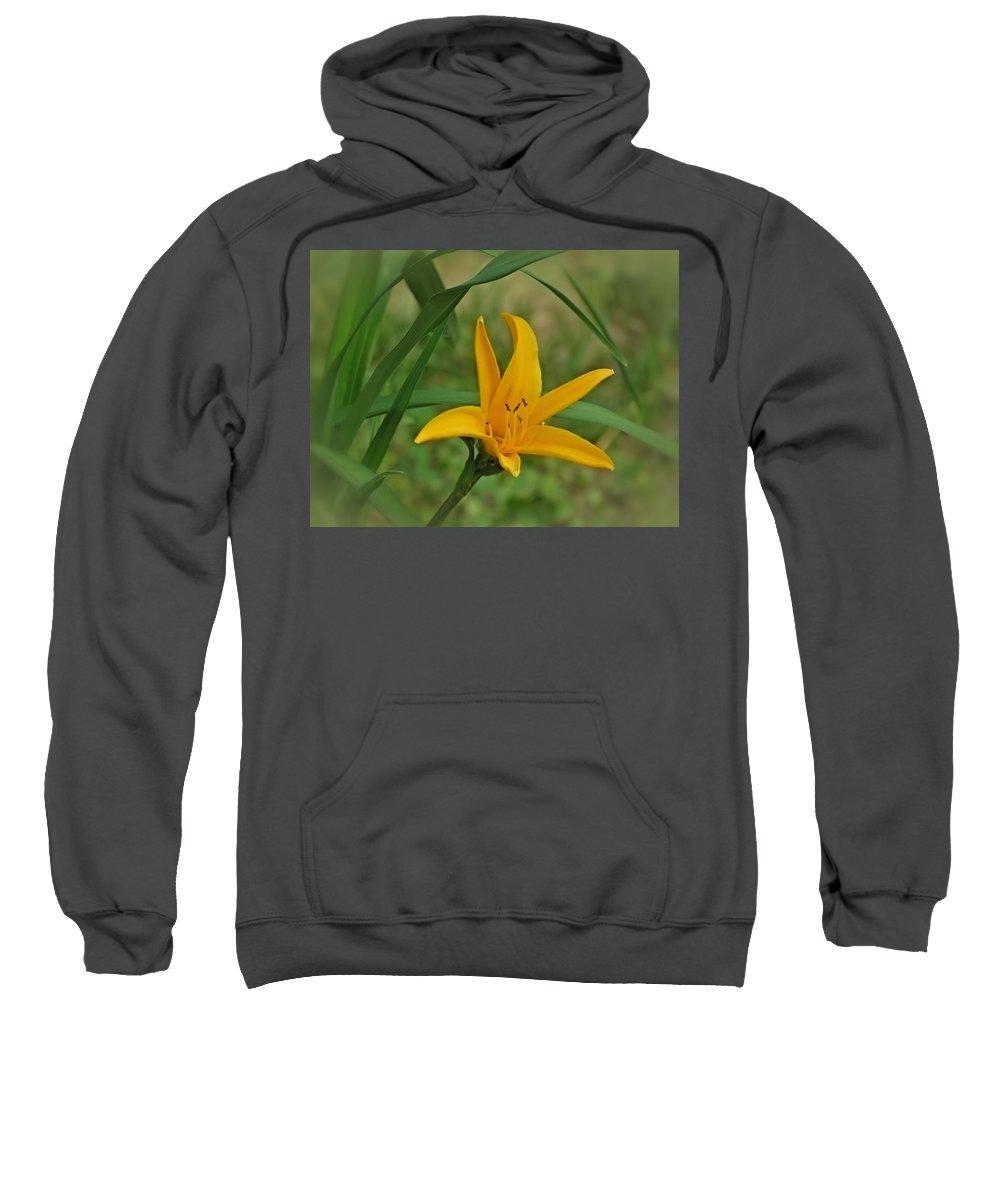 Orangeman Sweatshirt featuring the photograph Orangeman by MTBobbins Photography