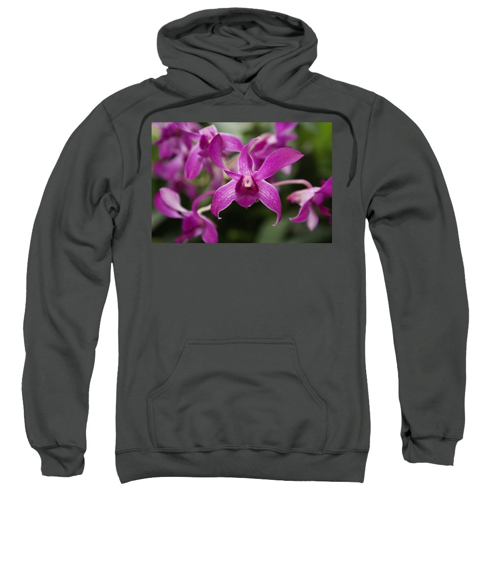 Orchid Sweatshirt featuring the photograph Orchid by Heather Coen