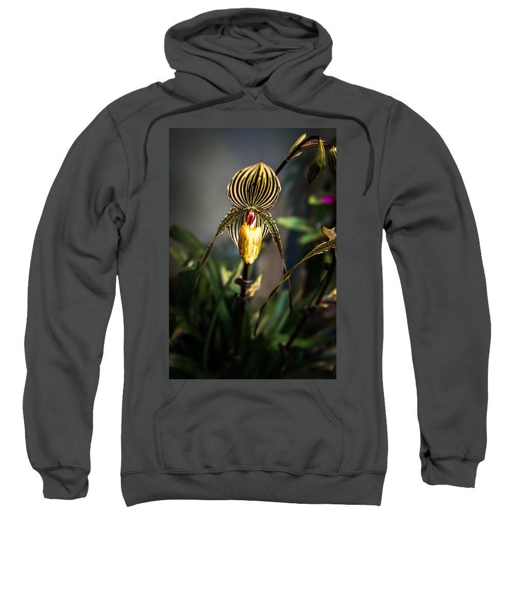 Orchid Sweatshirt featuring the photograph Orchid by Laimis Urbonas