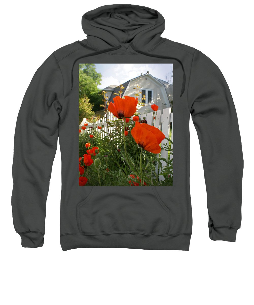Poppies Sweatshirt featuring the photograph Oriental Poppies by Heather Coen