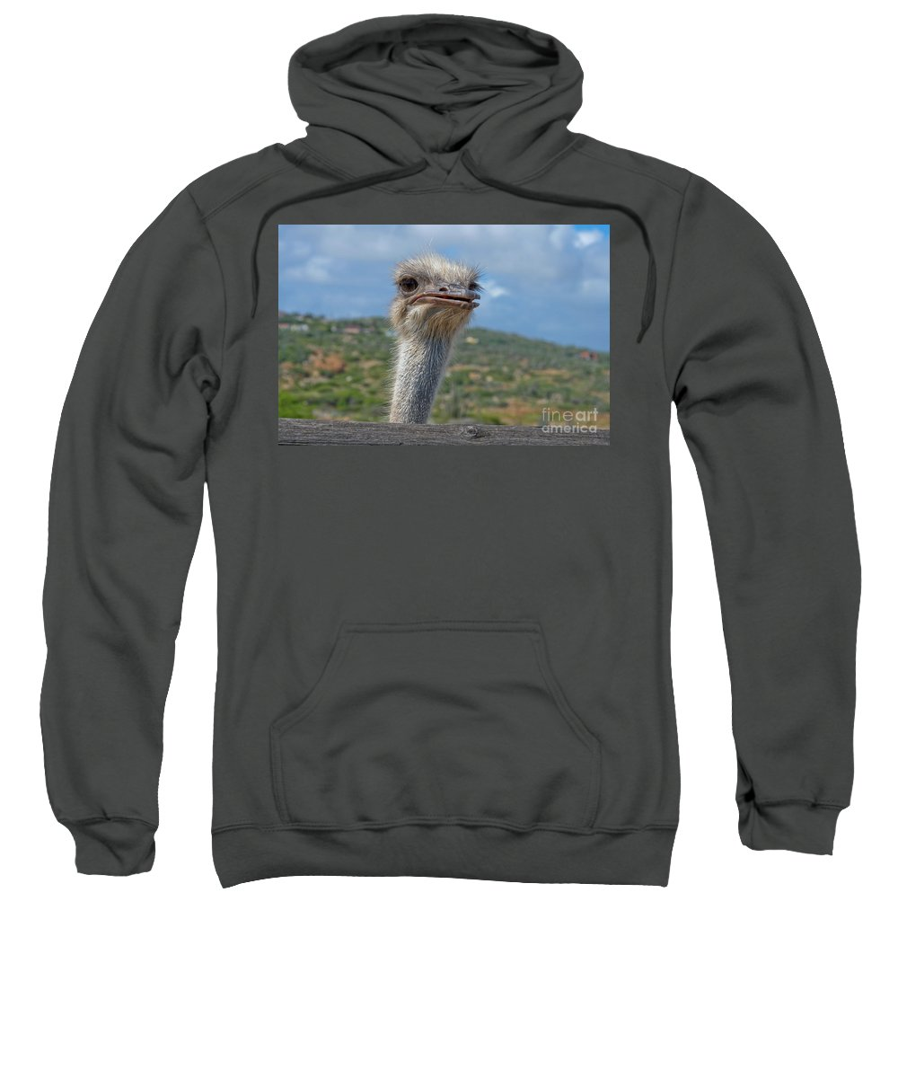 Ostrich Sweatshirt featuring the photograph Ostrich Head by Thomas Marchessault
