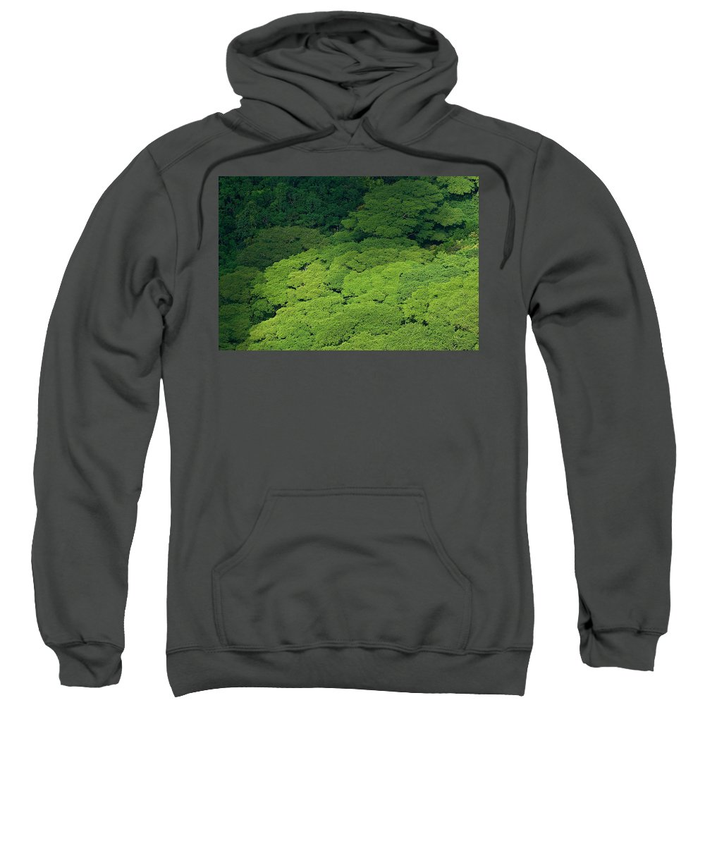 Birds Eye View Sweatshirt featuring the photograph Over The Treetops by Max Steinwald