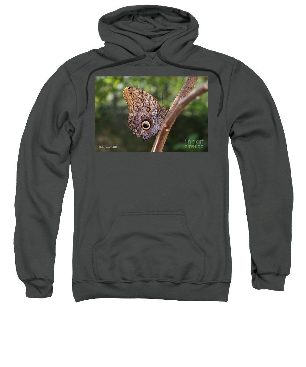 Butterfly Sweatshirt featuring the photograph Owls Don't Always Have Feathers by Shelley Jones