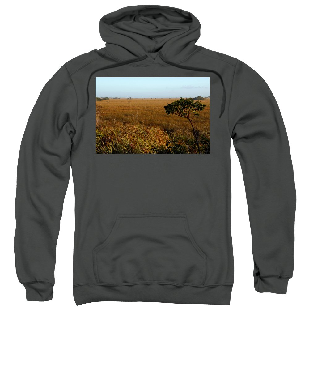 Everglades Sweatshirt featuring the painting Pahayokee by David Lee Thompson