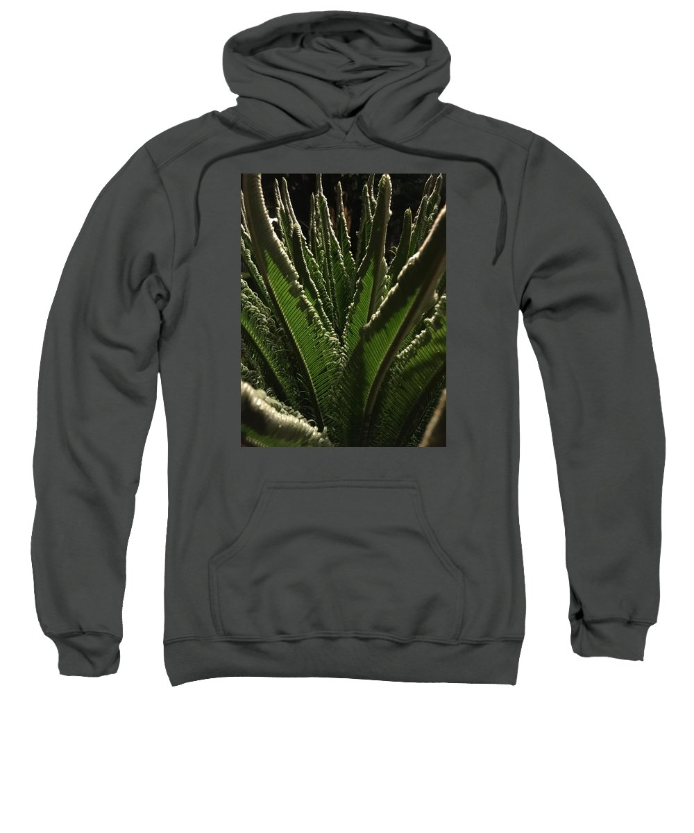 Palm Sweatshirt featuring the photograph Palm Art by Brad Mullins
