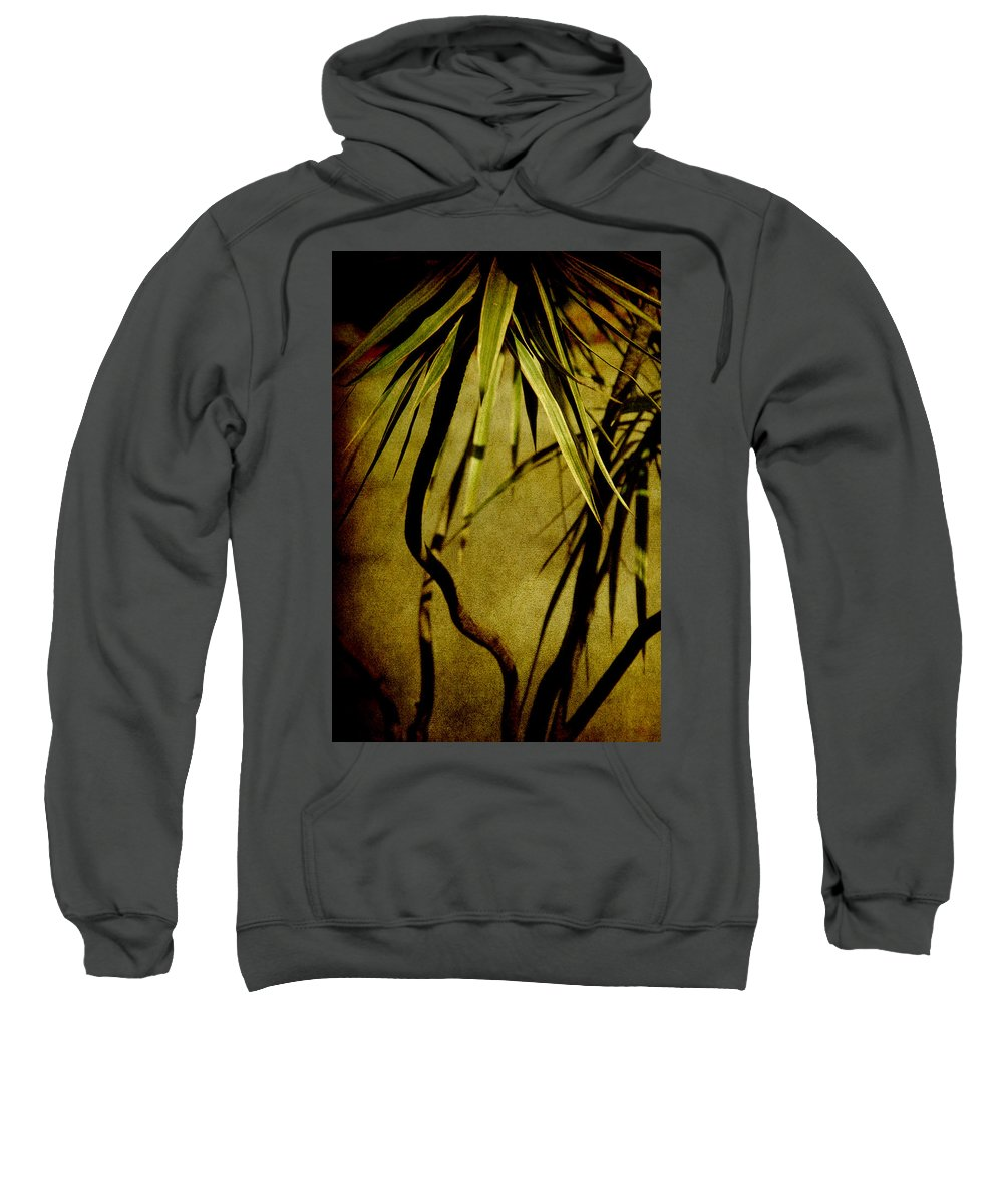 Palm Sweatshirt featuring the photograph Palm Fronds Are Green by Susanne Van Hulst