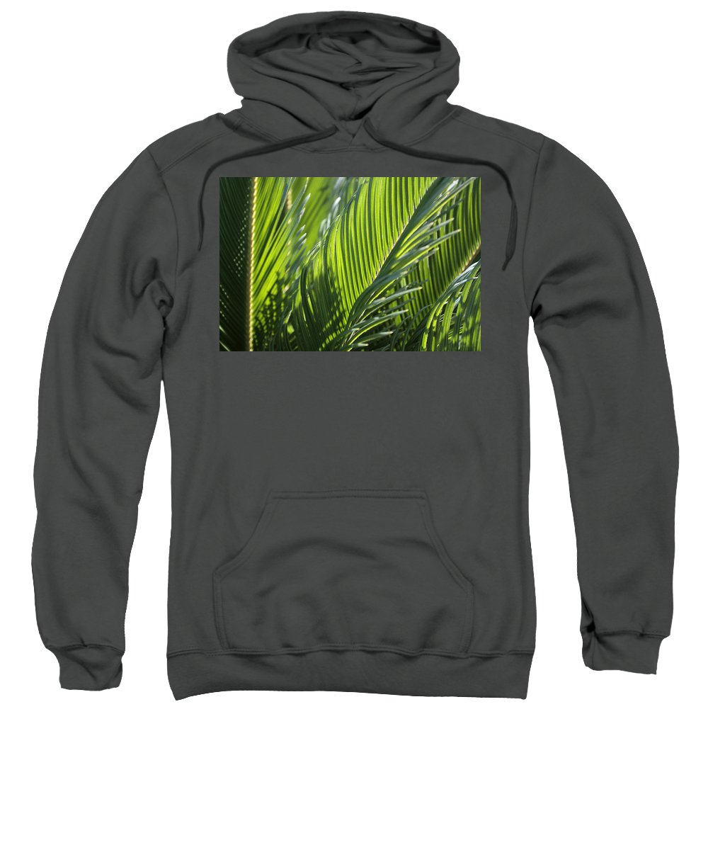 Palm Sweatshirt featuring the photograph Palm Leaf by Phil Crean