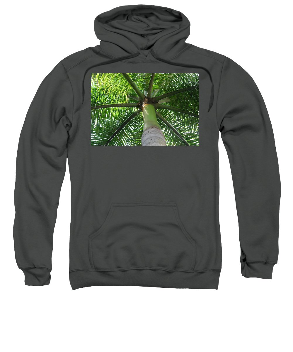 Macro Sweatshirt featuring the photograph Palm Unbrella by Rob Hans
