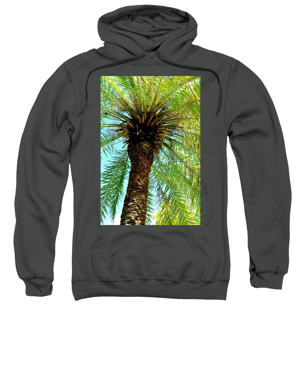 Photography Sweatshirt featuring the photograph Palm Upview by Susanne Van Hulst