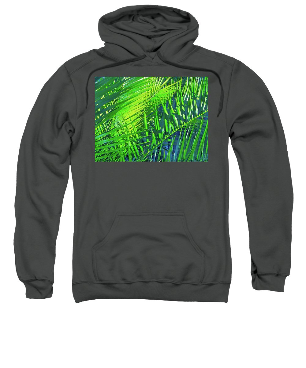 Palm Trees Sweatshirt featuring the photograph Palms 2 by Pamela Cooper
