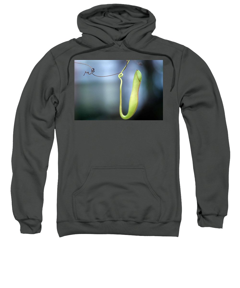 Pan's Green Flute Sweatshirt featuring the photograph Pan's Green Flute by Laurie Paci