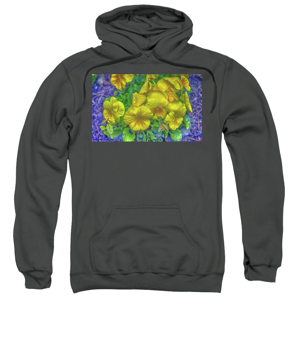 Pansies Sweatshirt featuring the photograph Pansies - Coloring Book Effect by Constantine Gregory