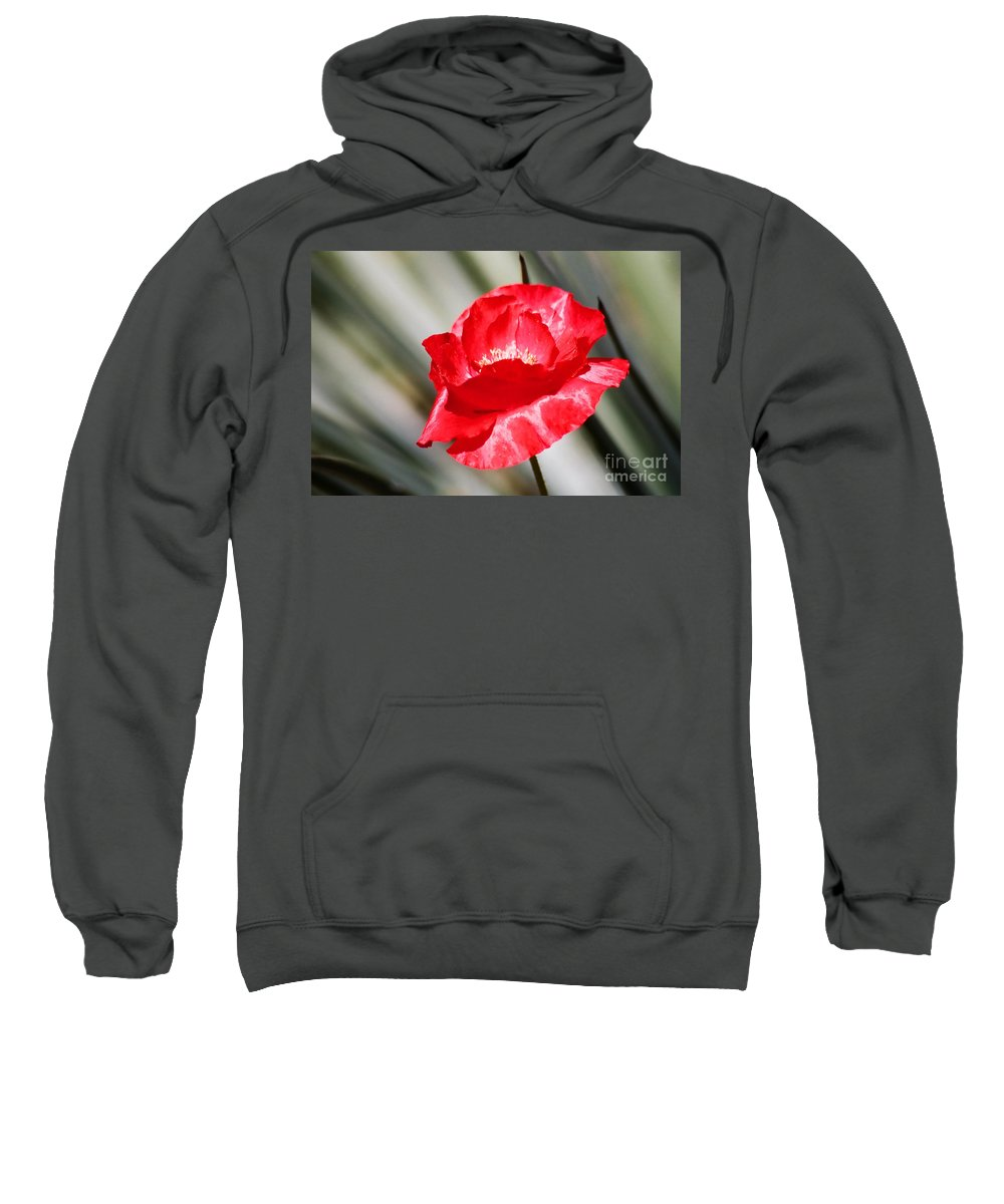 Poppies Sweatshirt featuring the photograph Paper Flower II by Kathy McClure