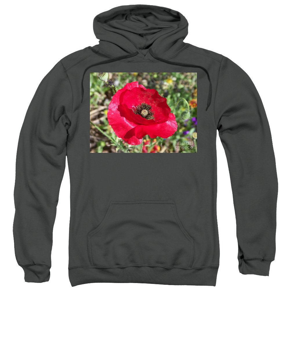 Red Sweatshirt featuring the photograph Paper Flower by Kathy McClure