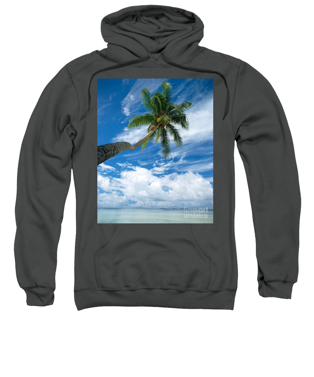 Bark Sweatshirt featuring the photograph Paradise by Mitch Warner - Printscapes