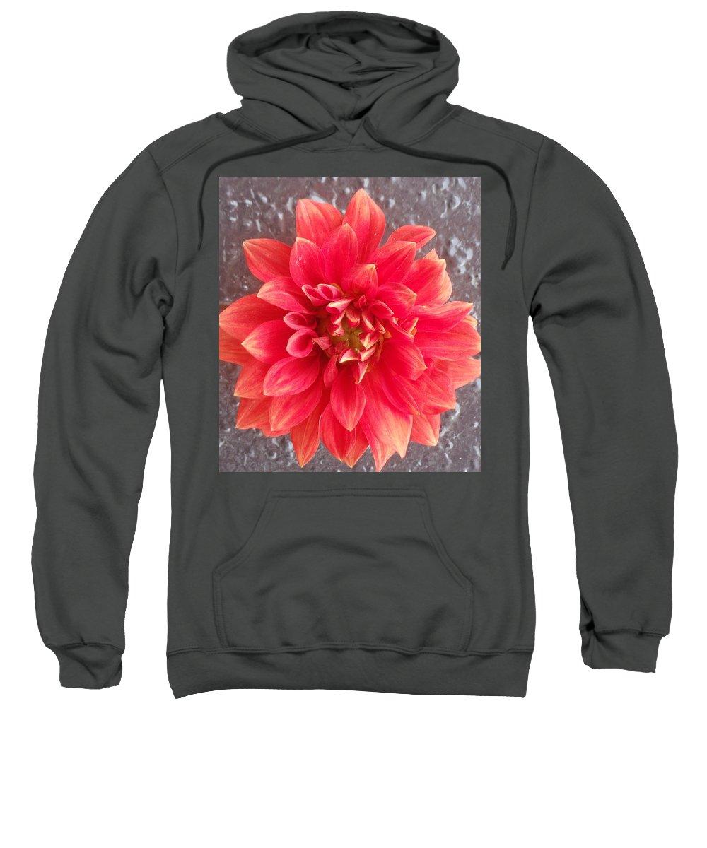Paris Sweatshirt featuring the photograph Parisian Flower by Donald Harrison