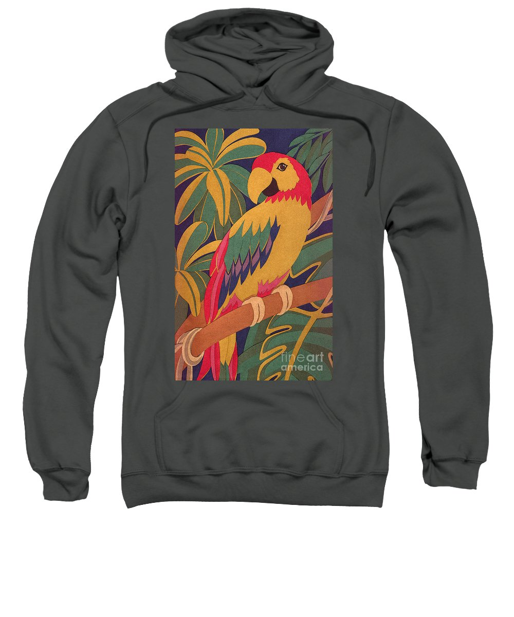 Nature Sweatshirt featuring the drawing Parrot by Lucyna A M Green