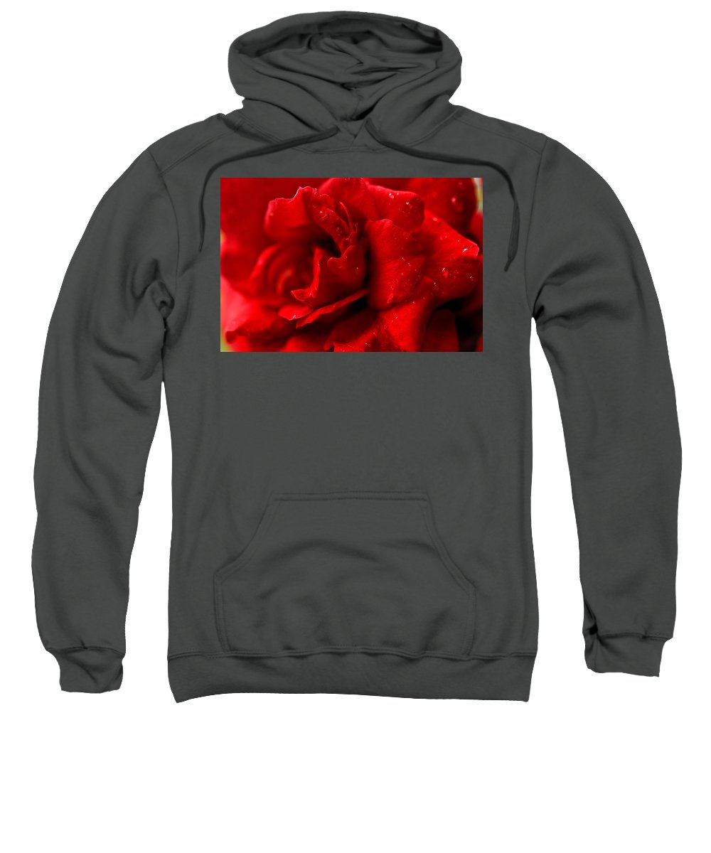 Flowers Sweatshirt featuring the photograph Passion For Flowers. Sensual Petals by Jenny Rainbow