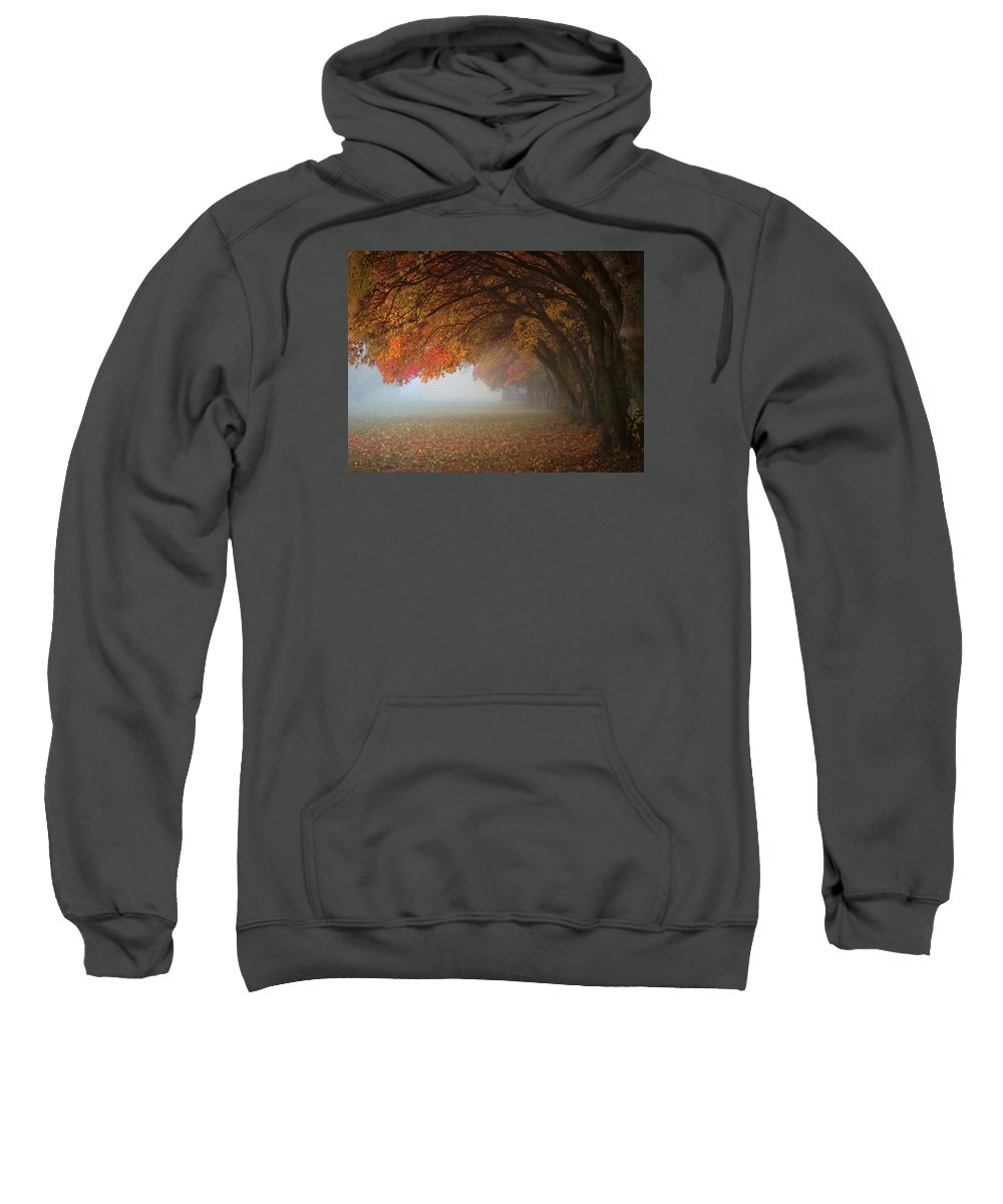 Fall Colors Sweatshirt featuring the photograph Pastel by Glenda Mueller