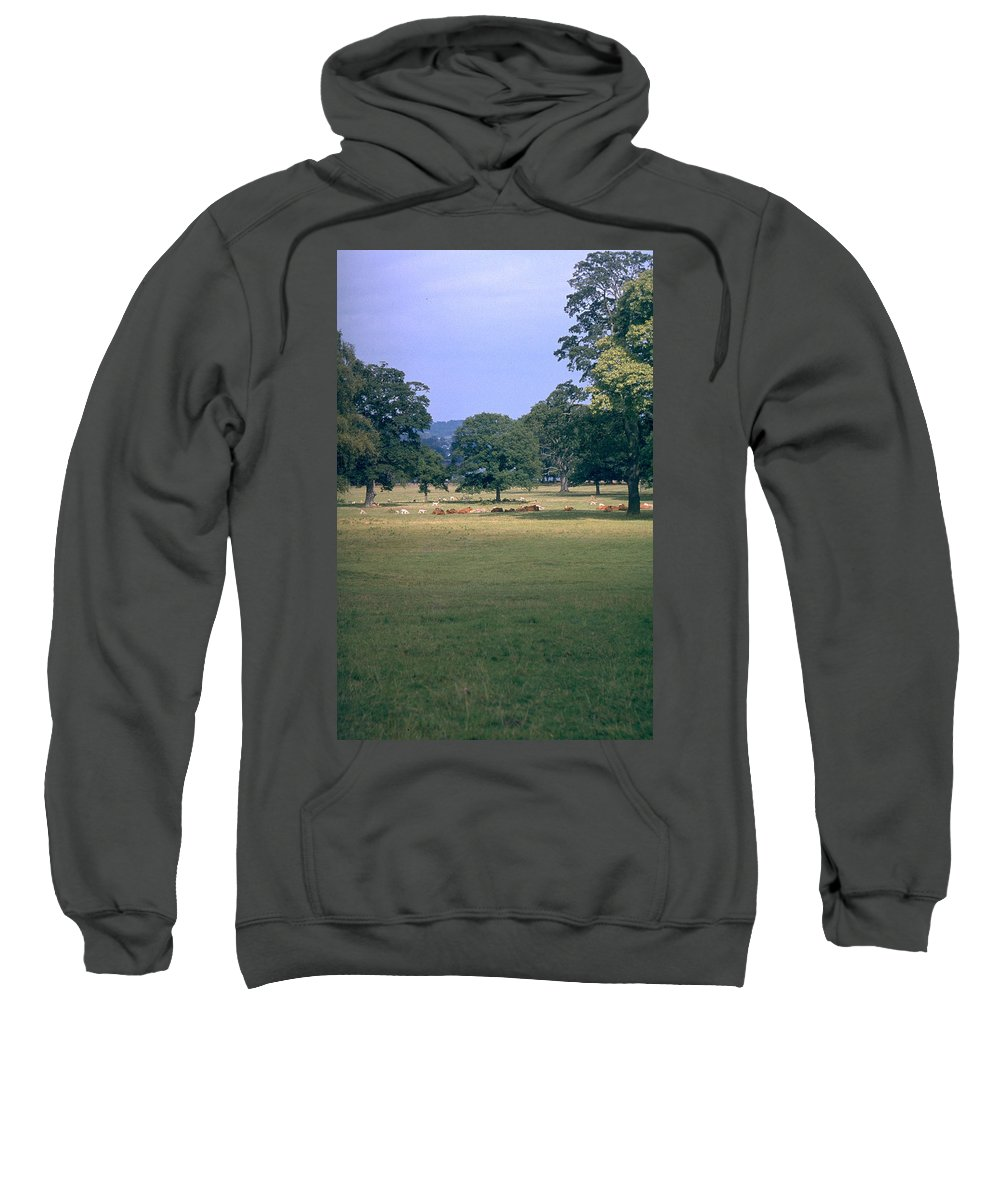 Great Britain Sweatshirt featuring the photograph Pasture by Flavia Westerwelle
