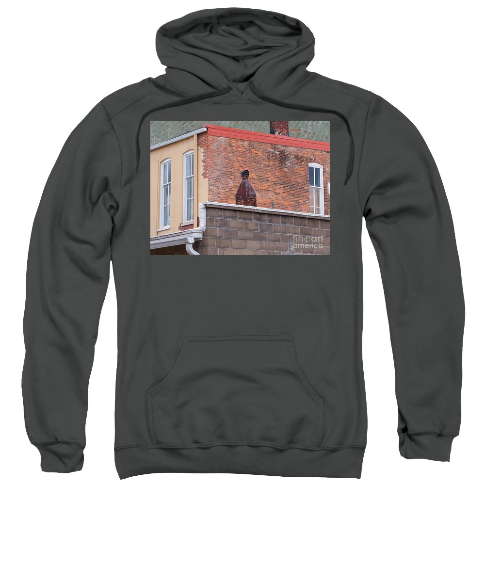 Vintage Sweatshirt featuring the photograph Patchy by Ann Horn