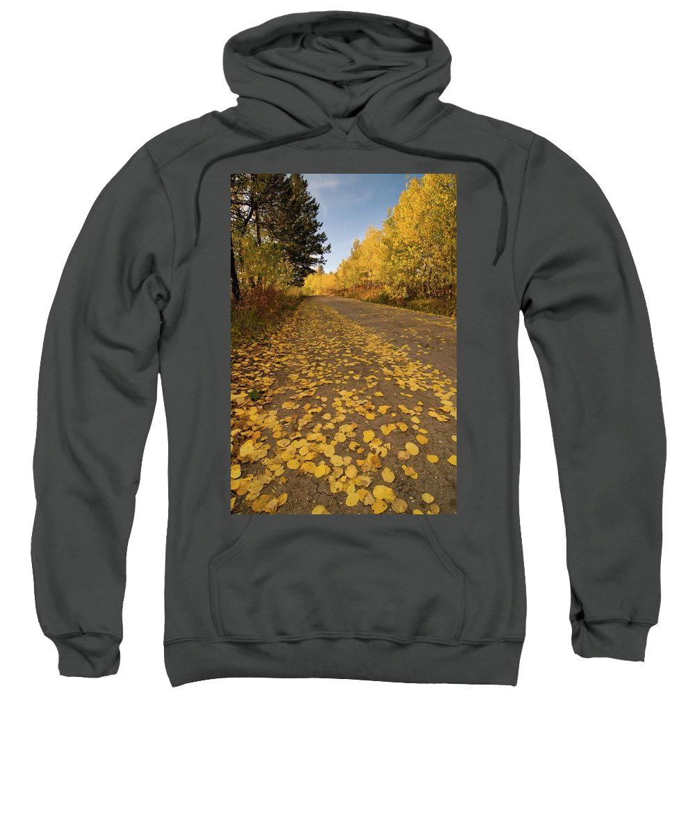 Grand Teton Sweatshirt featuring the photograph Paved In Gold by Steve Stuller