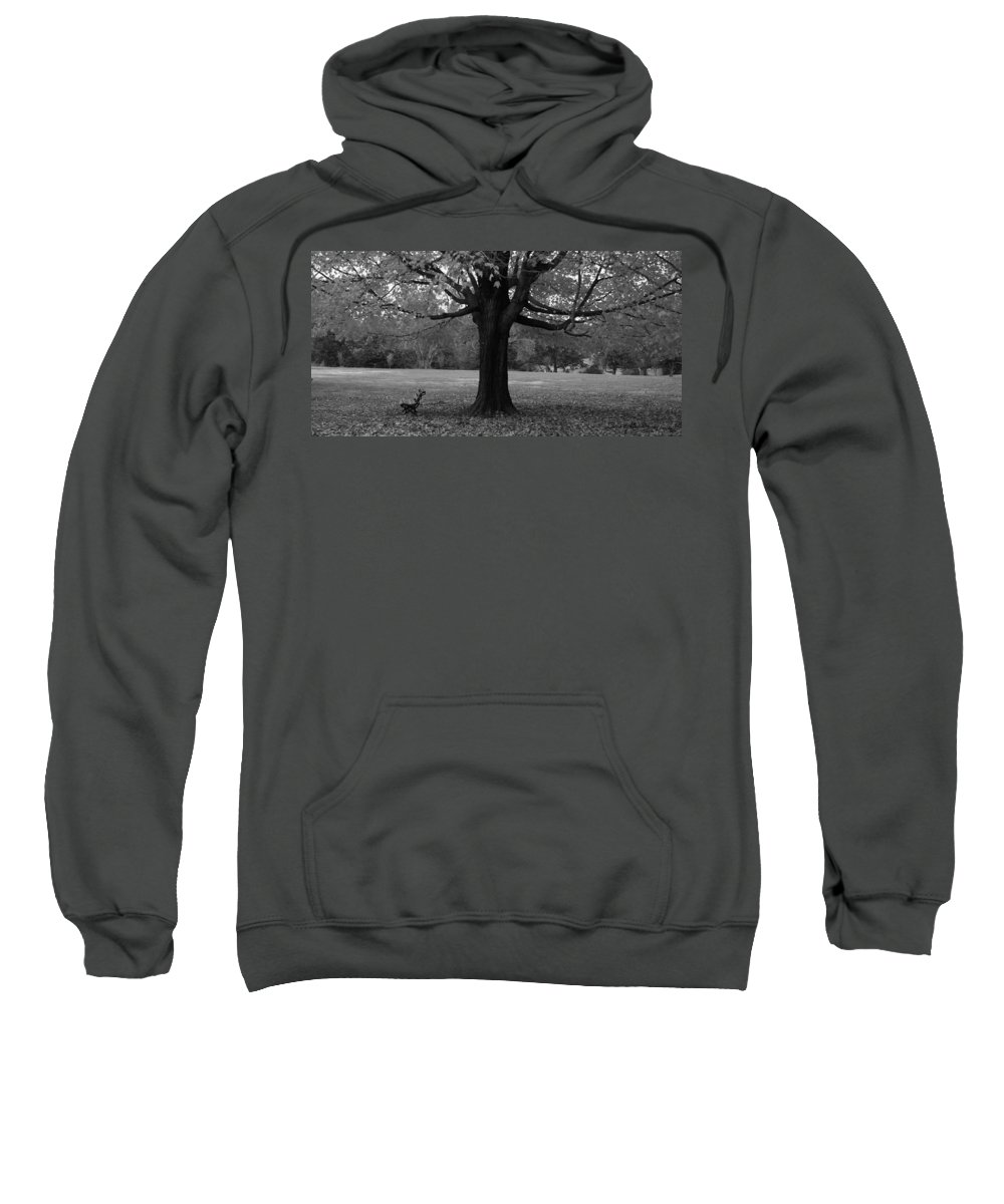 Maymont Sweatshirt featuring the photograph Peaceful Park by Tina Meador