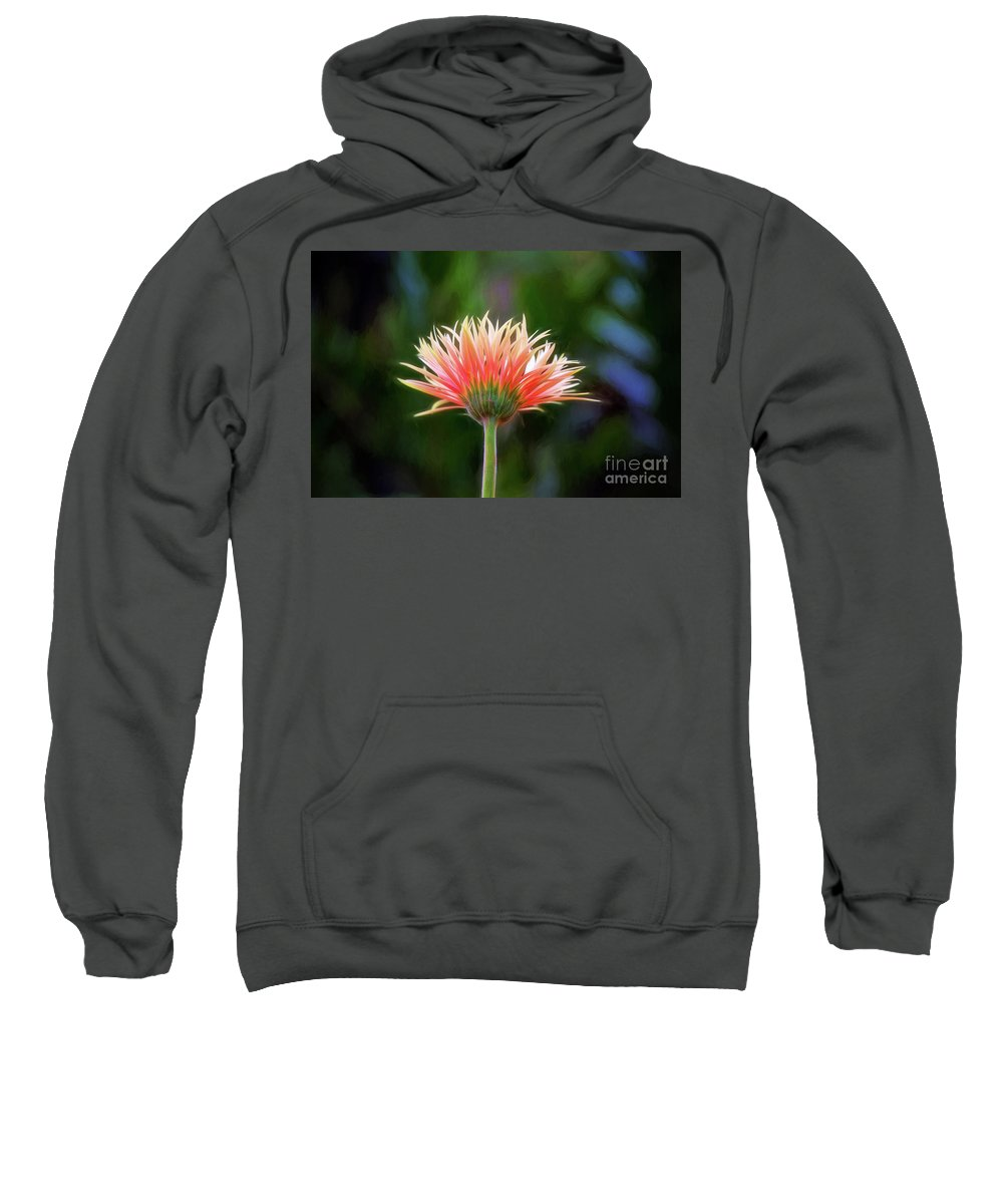 Flower Sweatshirt featuring the photograph Peach Perfection by Sharon McConnell