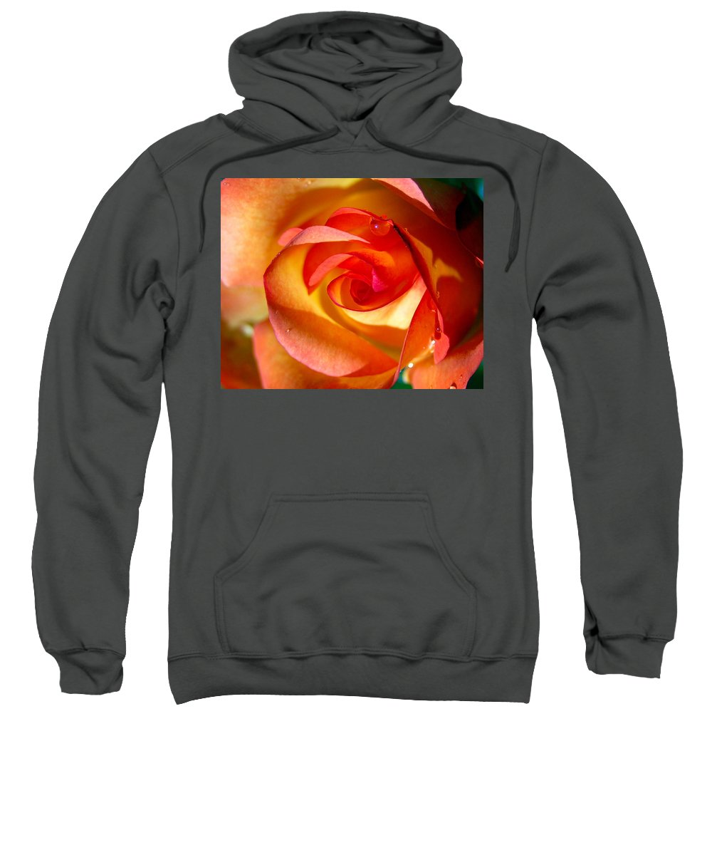 Rose Sweatshirt featuring the photograph Peach Rose by Amy Fose