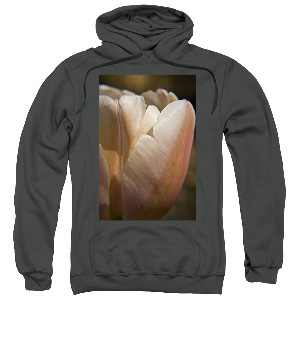 Peach Sweatshirt featuring the photograph Peach Tulip by Teresa Mucha