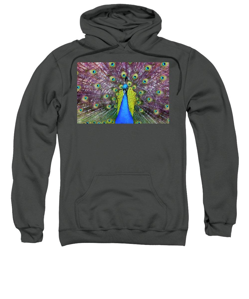 Peacock Sweatshirt featuring the digital art Peacock Art by Janet Fikar