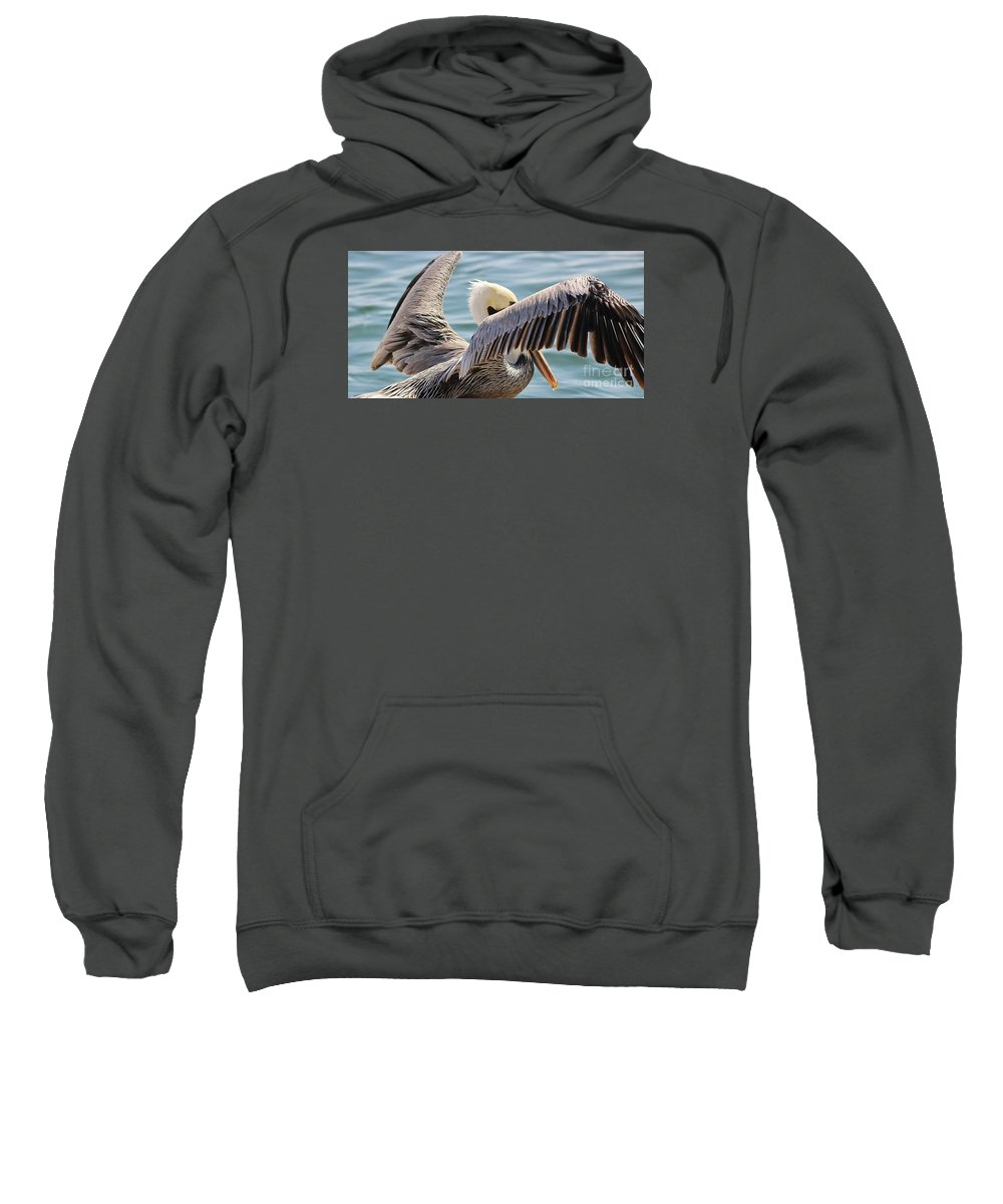 Pelican Sweatshirt featuring the photograph Pelican Playing Hide And Seek by Paulette Thomas