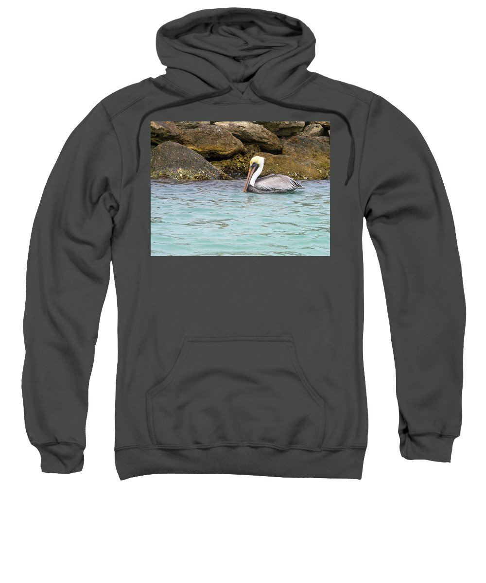 American Brown Pelican Sweatshirt featuring the photograph Pelican Trolling by Sally Weigand