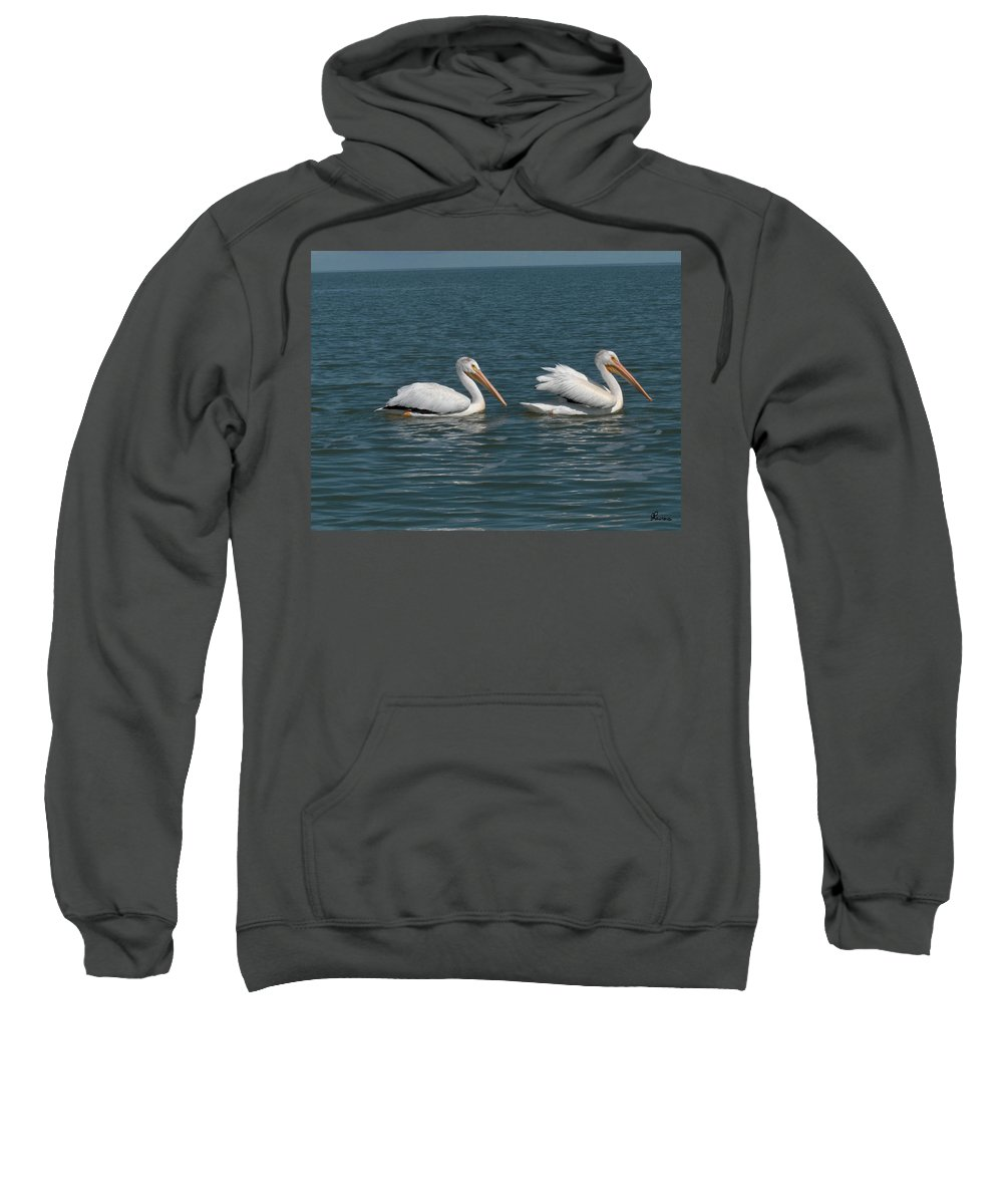 Wild Animals Birds Nature Lake Water Pelicans Sweatshirt featuring the photograph Pelicans by Andrea Lawrence