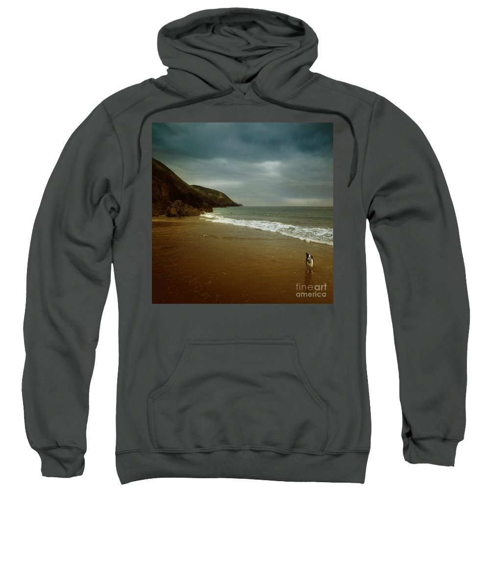 Beach Sweatshirt featuring the photograph Pembrokeshire by Angel Ciesniarska