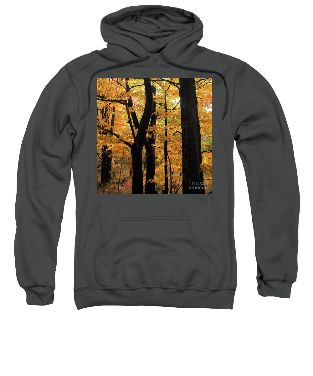 Autumn Sweatshirt featuring the photograph Pequaming Fall by Ron Long