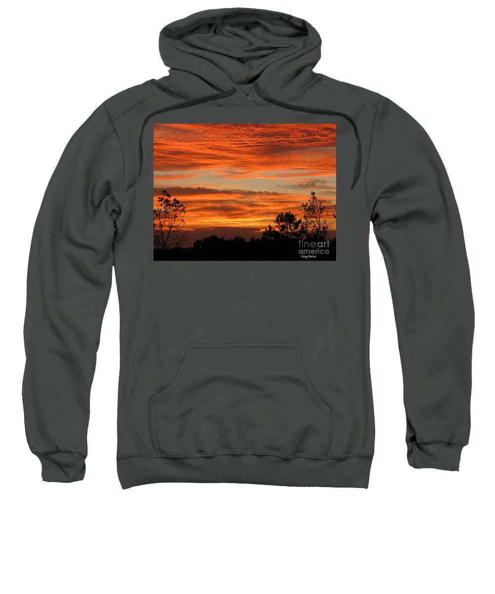 Art For The Wall...patzer Photography Sweatshirt featuring the photograph Perfection by Greg Patzer